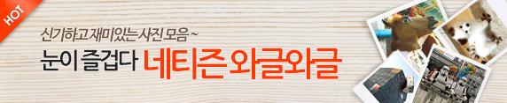 네티즌 와글와글