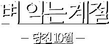 벼 익는 계절-당진10월