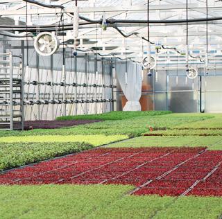 농축산물 이미지