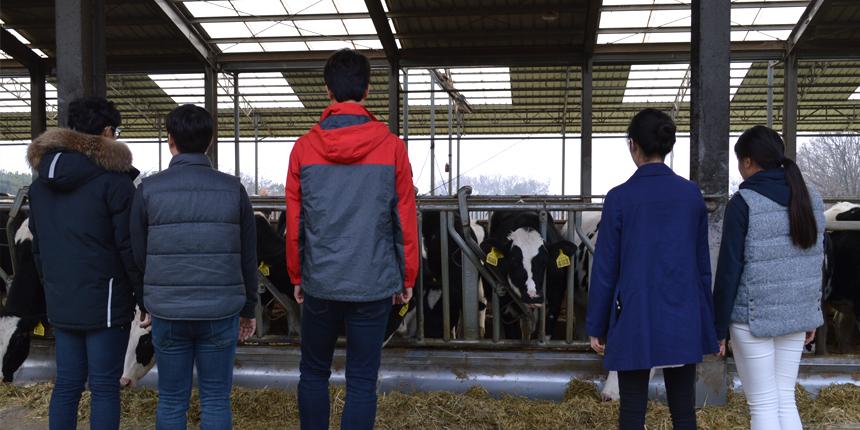 농업과젊음 와우목장
