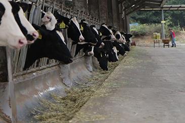 농업과내일이미지
